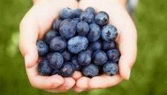 Better than blueberries? 3 fruits that pack a stronger antioxidant punch.